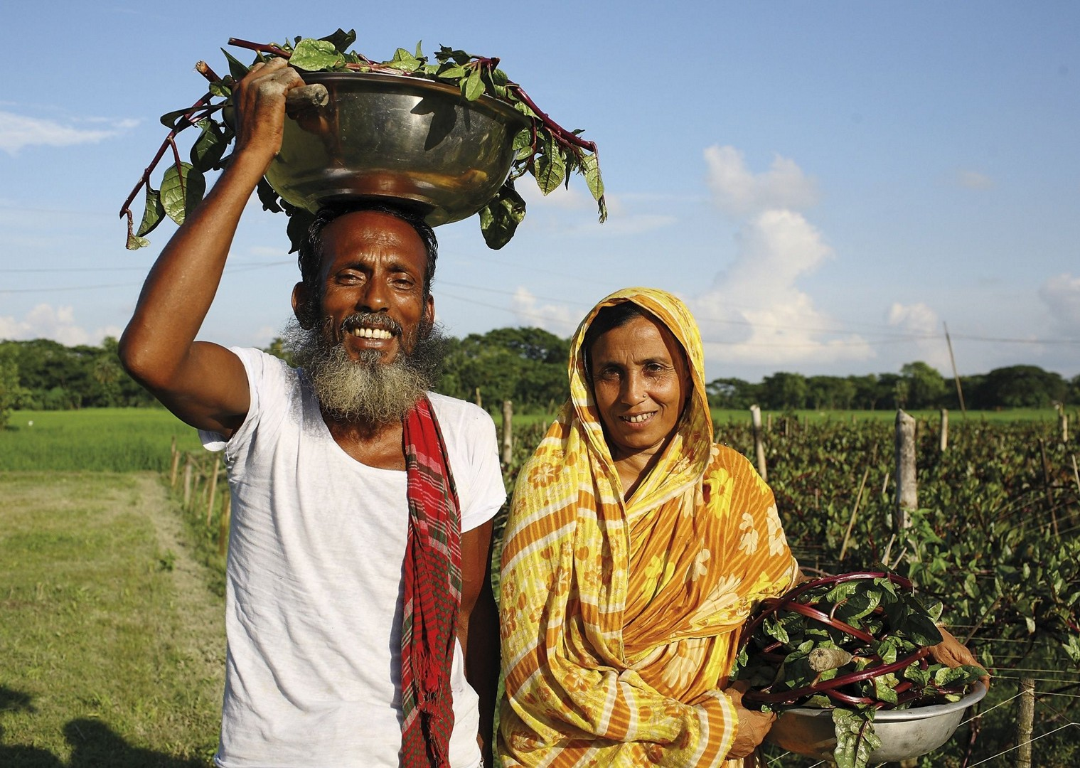 Harvesting spinach.jpg - Bangladesh - Meet the People Tours