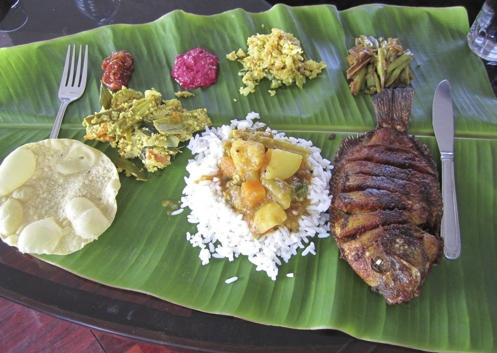 Lunch.jpg - Southern India - Meet the People Tours