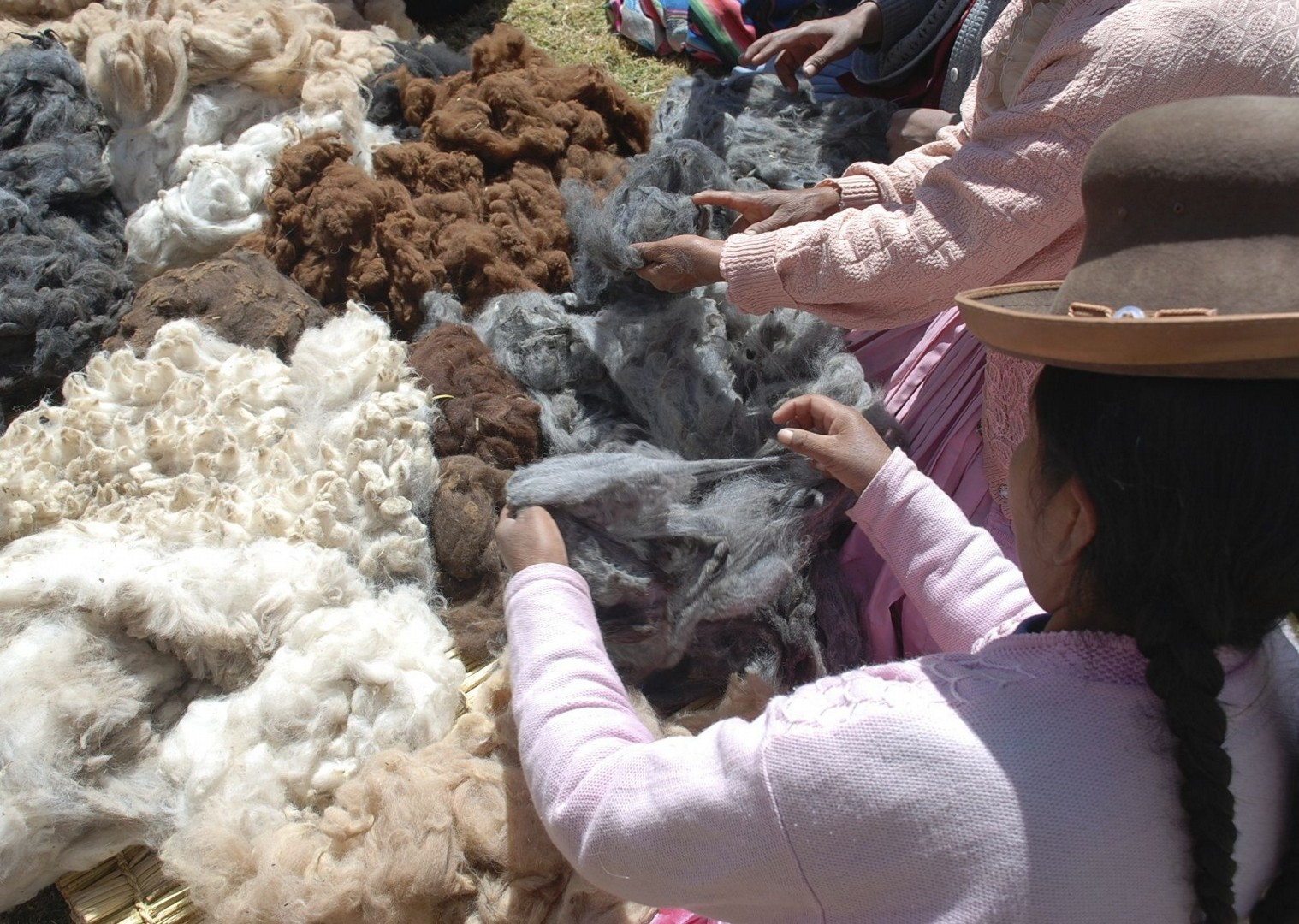 Sorting alpaca fibre.jpg - Peru - Meet the People Tours