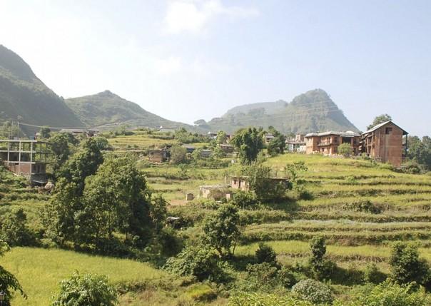 Rice Fields.jpg - Nepal - Meet the People Tours
