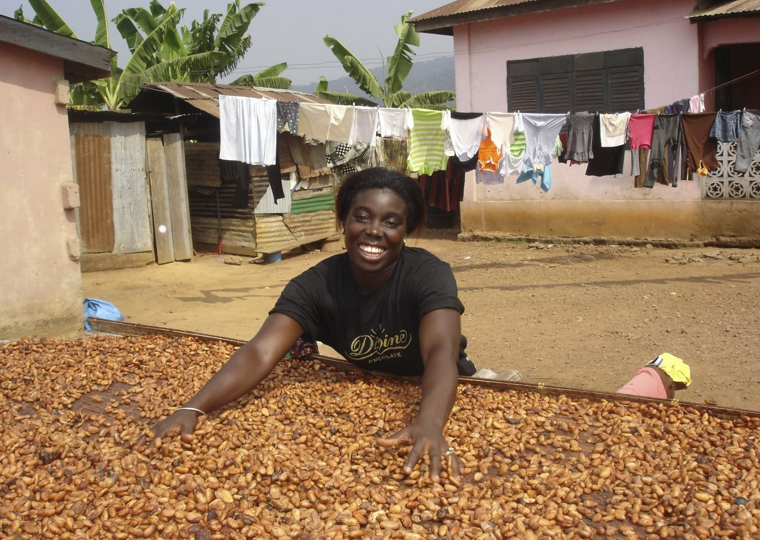 Cocoa Beans - Ghana - Meet the People Tours