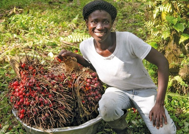 Palm Fruit - Ghana - Meet the People Tours
