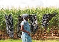 Creative Swaziland Image