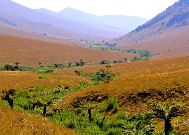 Malolotja Nature Reserve - Eswatini (Swaziland) - Meet the People Tours