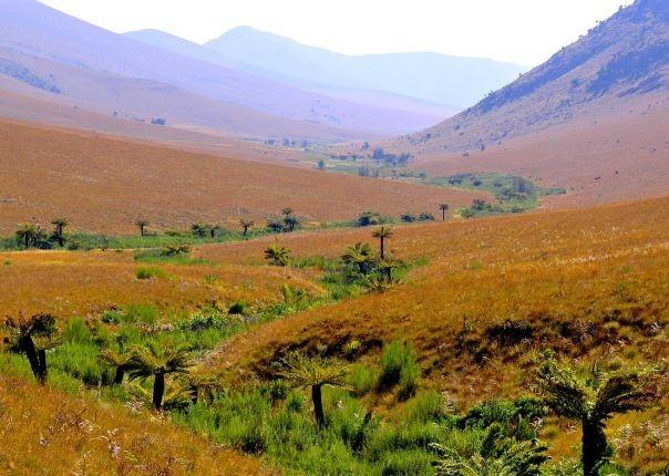 Malolotja Nature Reserve - Swaziland - Meet the People Tours