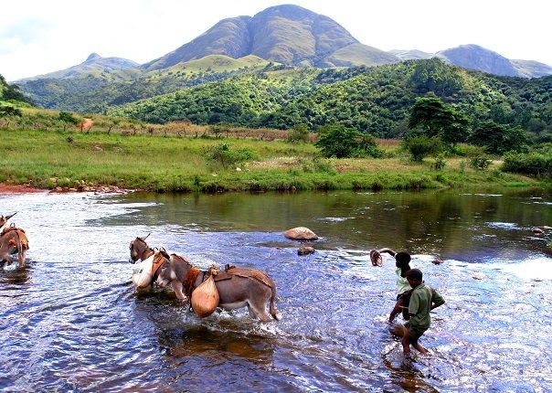 Swazi River - Swaziland - Meet the People Tours