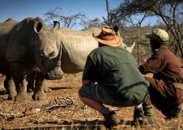 Mkhaya Rhino - Swaziland - Meet the People Tours