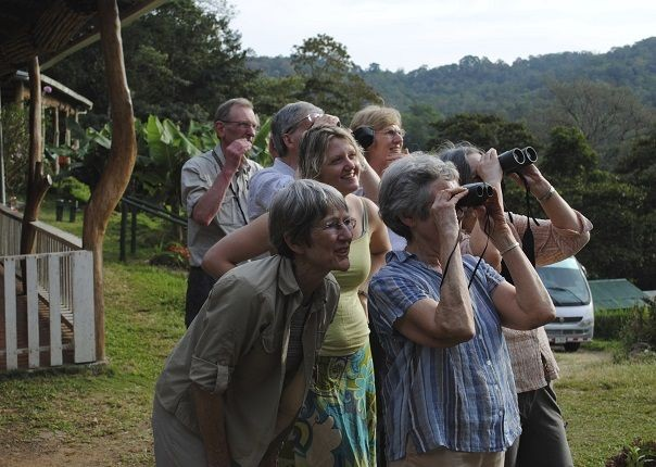 Spotting Wildlife - Costa Rica - Meet the People Tours