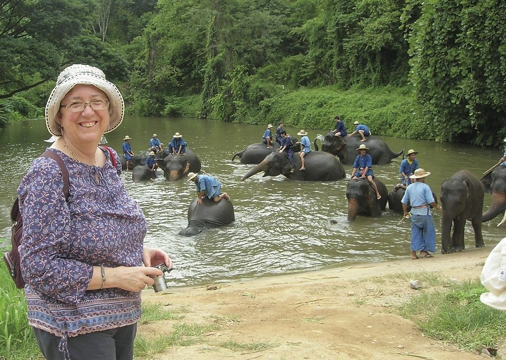 Elephants.jpg - Thailand - Meet the People Tours